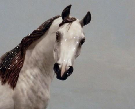 OPTIME Arabian